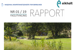 Eikholt-rapport om CBS syndrom